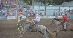 Wild Bill Hickok Rodeo 2015